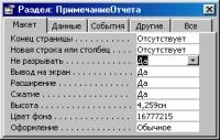 Рис. 2. Вид окна свойств Примечания отчета